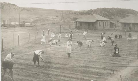 Historic photos shows mostly children working in the garden.